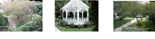 Gazeebo Garden picture